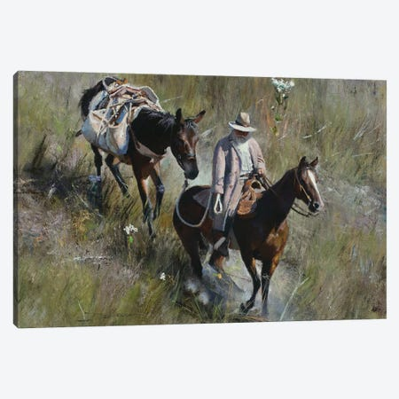 Grassy Descent Canvas Print #DKU31} by David Edward Kucera Canvas Art