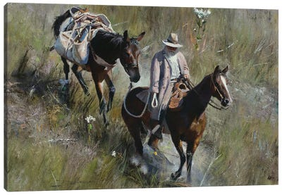Grassy Descent Canvas Art Print