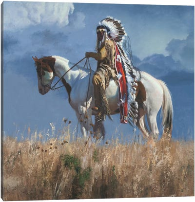High Atop The Plains Canvas Art Print