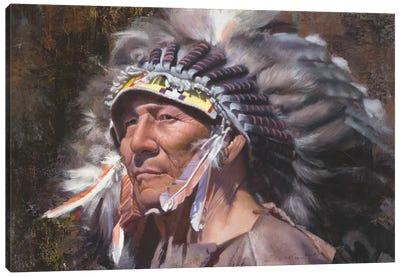 Many Feathers Canvas Art Print