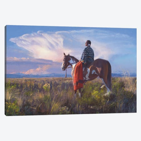 Red Blanket Horizon Canvas Print #DKU62} by David Edward Kucera Canvas Print
