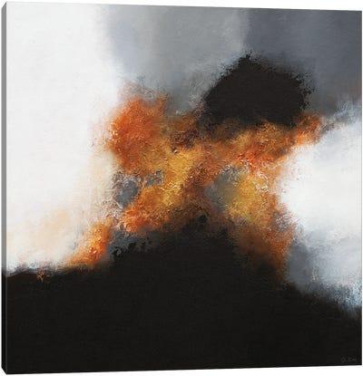 Gold & Black III Canvas Art Print