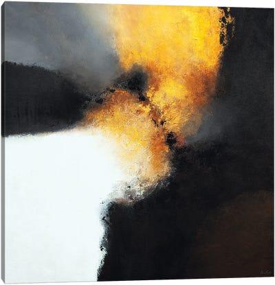 Gold & Black VIII Canvas Art Print