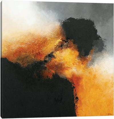 Gold & Black IX Canvas Art Print