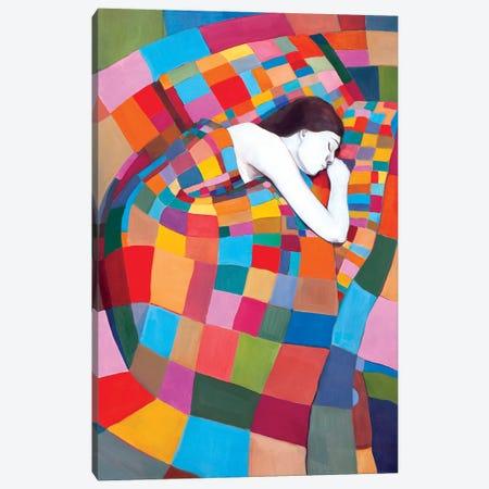 Sleeping On The Squares Canvas Print #DKZ41} by Daniel Kozeletckiy Canvas Artwork