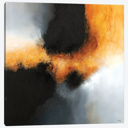 Gold & Black IV Canvas Print #DKZ59} by Daniel Kozeletckiy Art Print
