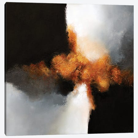 Gold & Black VII Canvas Print #DKZ61} by Daniel Kozeletckiy Canvas Wall Art