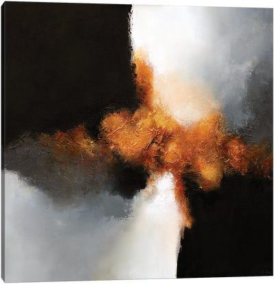 Gold & Black VII Canvas Art Print