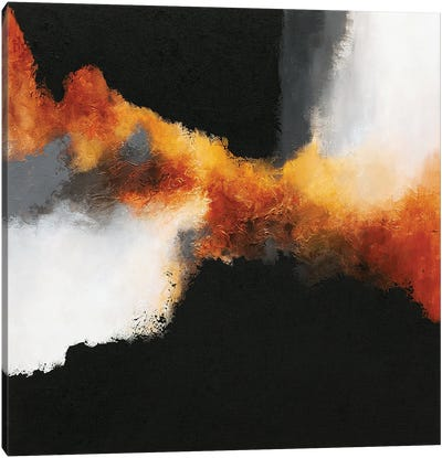 Gold & Black XIV Canvas Art Print