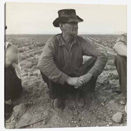 Jobless On The Edge Of A Pea Field, Imperial Valley, California, USA Canvas Print #DLA5} by Dorothea Lange Canvas Artwork
