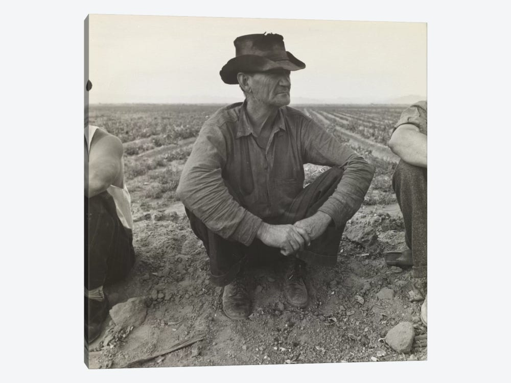 Jobless On The Edge Of A Pea Field, Imperial Valley, California, USA by Dorothea Lange 1-piece Canvas Art Print