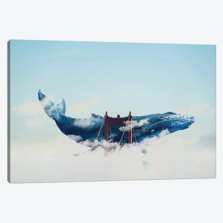 Whale Watching In San Fran Canvas Print #DLB100} by David Loblaw Canvas Artwork