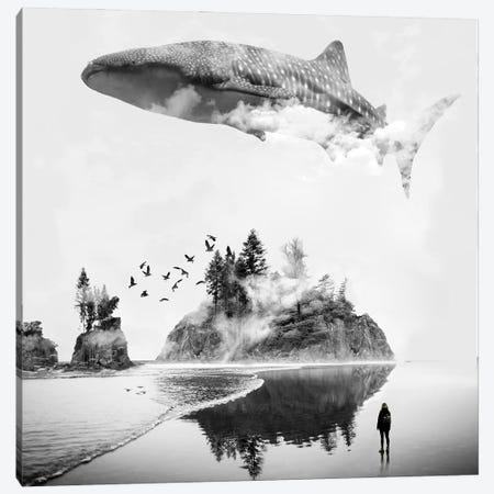 Whale Shark Island Canvas Print #DLB101} by David Loblaw Canvas Art