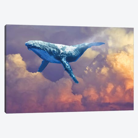 World Whale Watching Canvas Print #DLB102} by David Loblaw Canvas Artwork