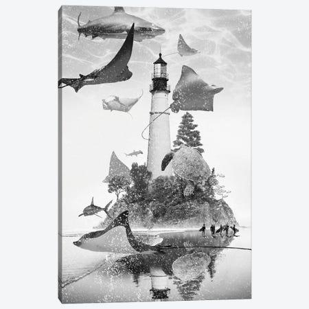 Mantaray Island Canvas Print #DLB107} by David Loblaw Canvas Print