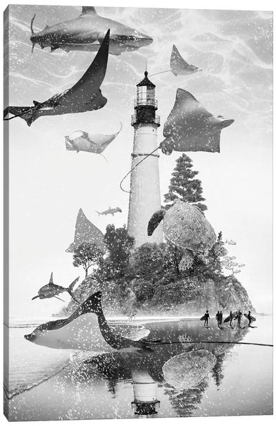Mantaray Island Canvas Art Print