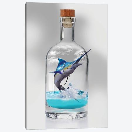 Sailfish In A Bottle Canvas Print #DLB110} by David Loblaw Art Print