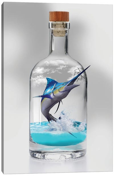 Sailfish In A Bottle Canvas Art Print