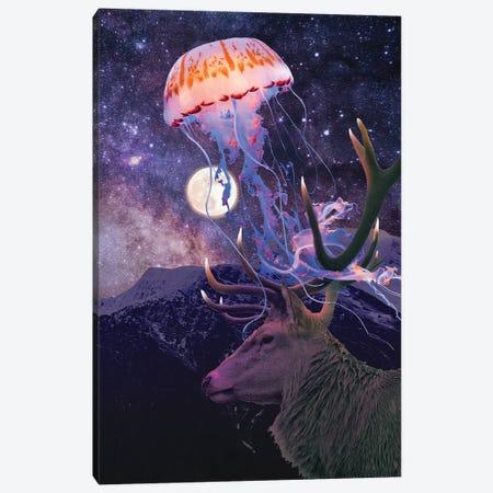 Night Light Canvas Print #DLB112} by David Loblaw Art Print