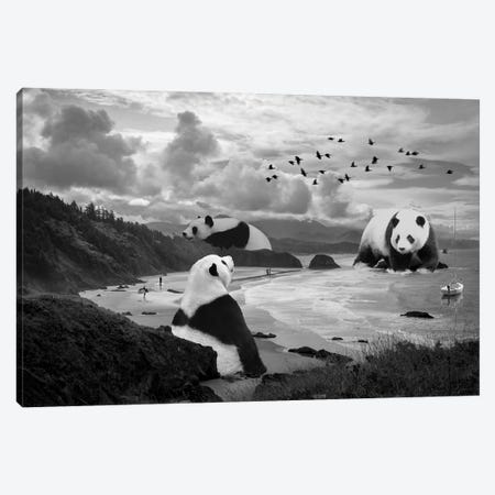 Giant Panda At The Beach Canvas Print #DLB11} by David Loblaw Canvas Wall Art