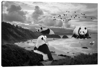 Giant Panda At The Beach Canvas Art Print