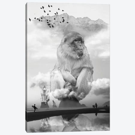 Monkey Sea Monkey Do Canvas Print #DLB17} by David Loblaw Canvas Print