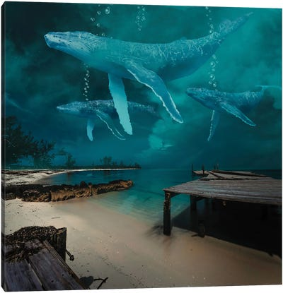 Ghost Whale At Night Canvas Art Print
