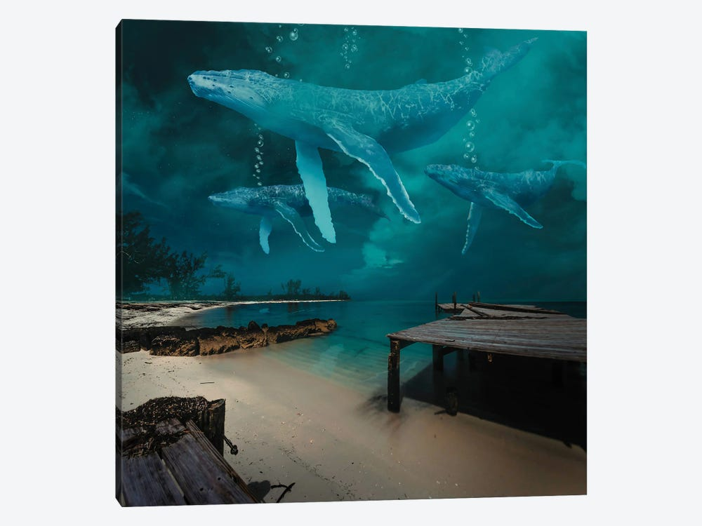 Ghost Whale At Night by David Loblaw 1-piece Art Print