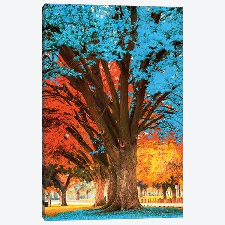 Blue Tree Canvas Print #DLB24} by David Loblaw Canvas Art