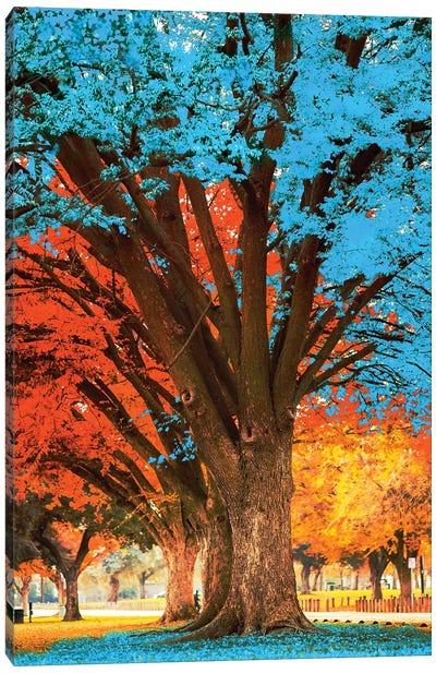 Blue Tree Canvas Art Print