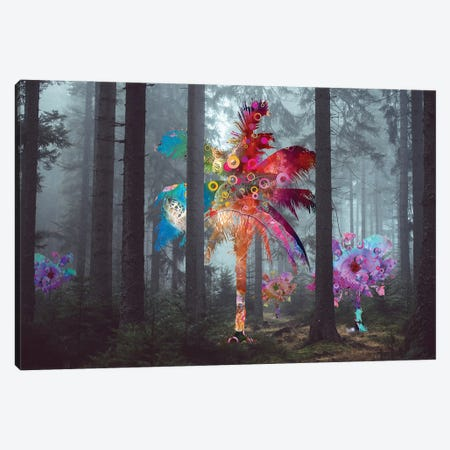 Diversity In The Forest Canvas Print #DLB29} by David Loblaw Art Print