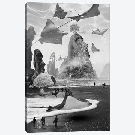 Lost On Surf Island Canvas Print #DLB40} by David Loblaw Canvas Art Print