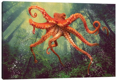 Octo Forest Canvas Art Print
