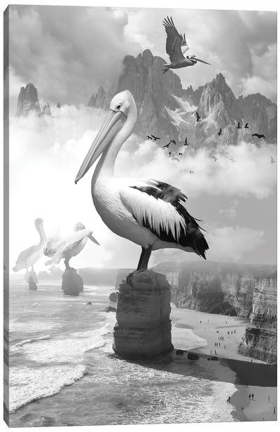 Giant Pelicans Peak Canvas Art Print