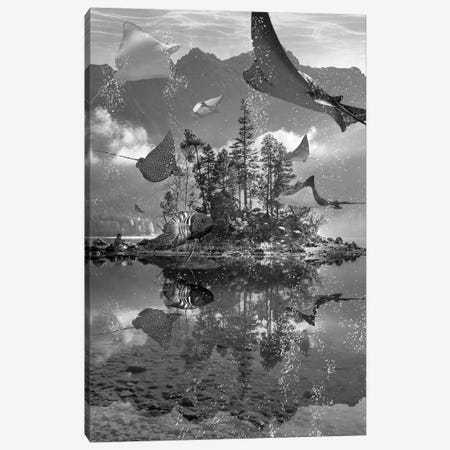 Rays Lake Canvas Print #DLB53} by David Loblaw Canvas Art
