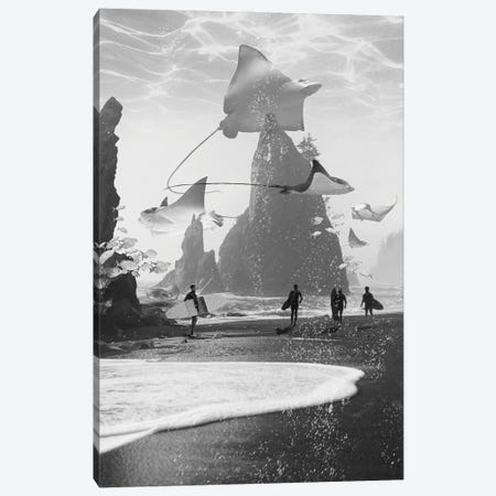 Rays Point Canvas Print #DLB54} by David Loblaw Canvas Print