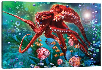 Red Octopus Canvas Art Print