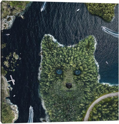 Fox Point From Above Canvas Art Print