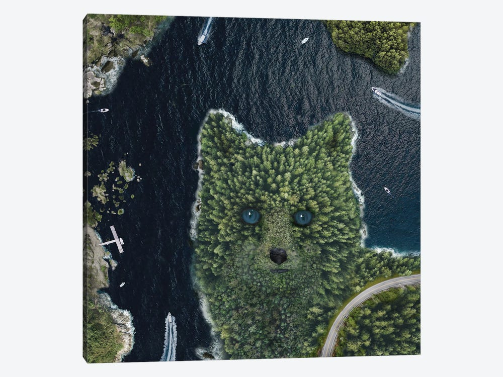 Fox Point From Above by David Loblaw 1-piece Canvas Wall Art