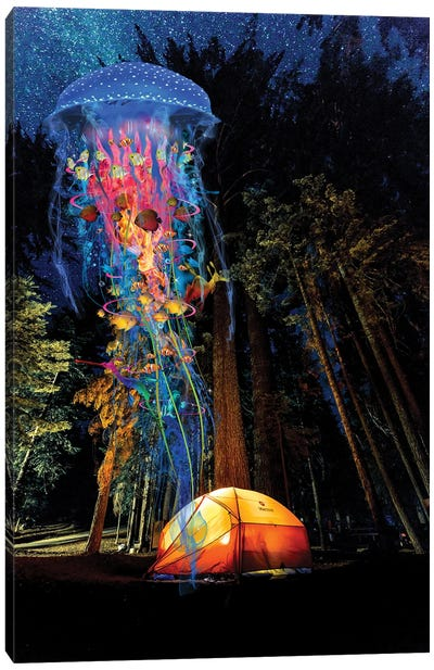 Electric Jellyfish Visits A Campground Canvas Art Print