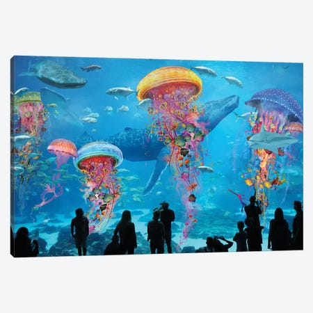 Super Electric Jellyfish Aquarium Canvas Print #DLB64} by David Loblaw Canvas Wall Art
