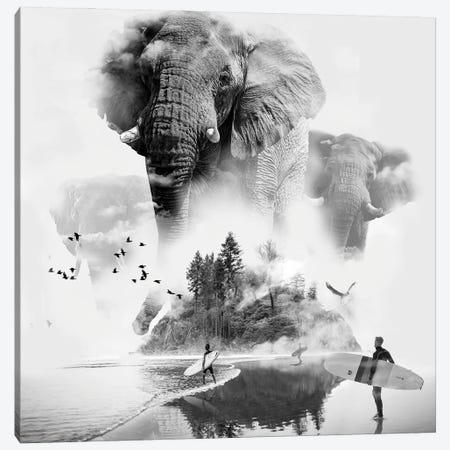 Elephant In The Mist Surfer Canvas Print #DLB66} by David Loblaw Canvas Artwork