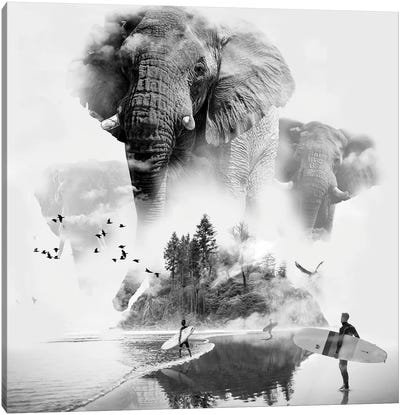 Elephant In The Mist Surfer Canvas Art Print