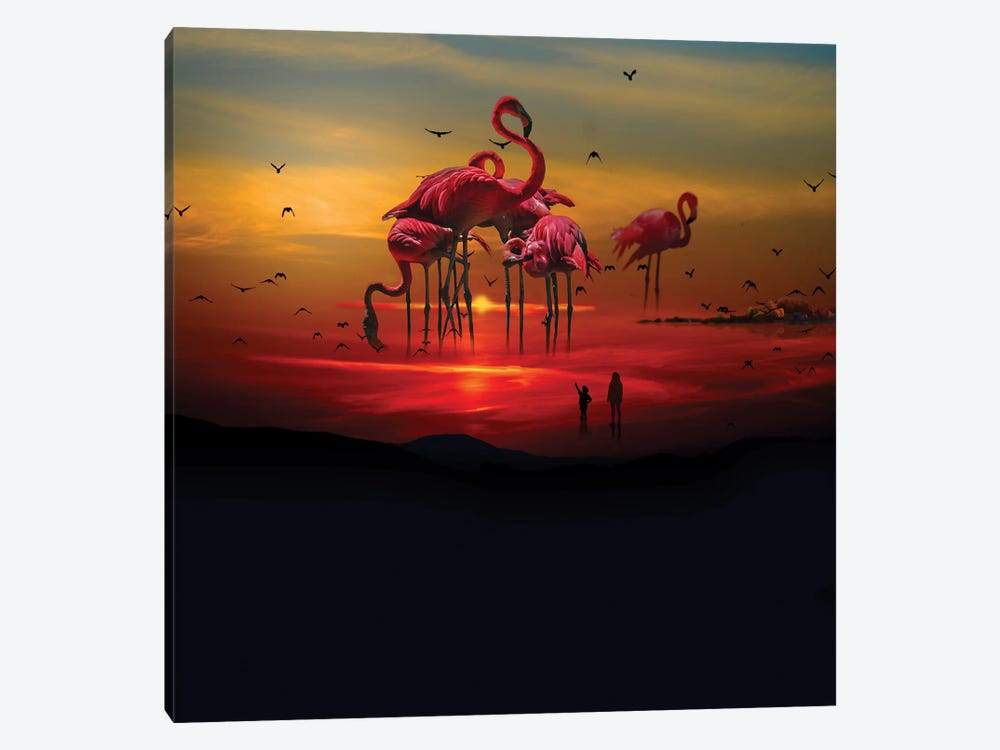 Flamingo Beach by David Loblaw 1-piece Canvas Print