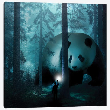 Giant Panda In A Forest Canvas Print #DLB6} by David Loblaw Canvas Art Print