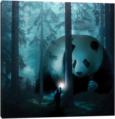 Giant Panda In A Forest Canvas Art Print