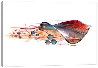 Colorful Stingray Canvas Art Print