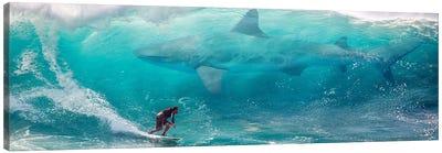 Shark Surfer Canvas Art Print
