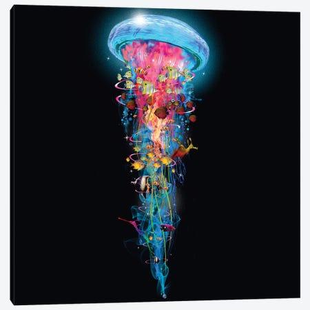 Super Electric Jellyfish World Wide Canvas Print #DLB83} by David Loblaw Canvas Art Print
