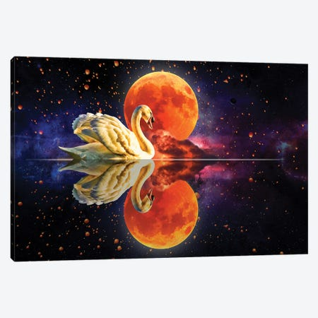 Swan Lake Canvas Print #DLB87} by David Loblaw Canvas Artwork